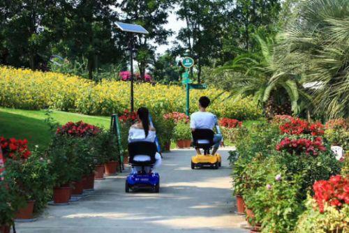 旅游景区盈利新方式——景区电动代步车