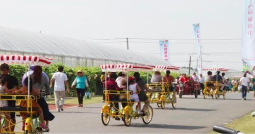 看景区与共享单车如何实现共生共赢
